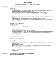 aide resume exles special education aide resume sles velvet