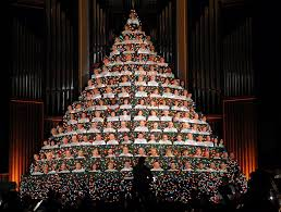 100 live christmas trees near me christmas trees real or