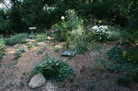 Gardening With Rocks by Rock Garden Journal Entry 6 Gardening With Confidence Plants