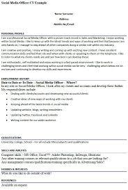 cv examples computer skills