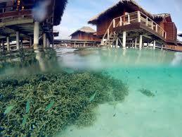 visit maldives anantara veli over the water bungalow youtube