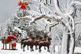 free photo christmas father christmas fir free image on