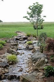 Backyard Drainage Ideas 50 Best Rain Garden Images On Pinterest Rain Garden Gardening