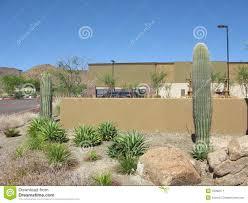 arizona backyard stock image image 15092571