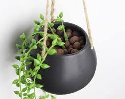 hanging terrarium etsy