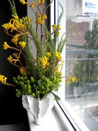 kangaroo paws make the best flower arrangements erbology