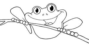 frog coloring clipart image coloring frog