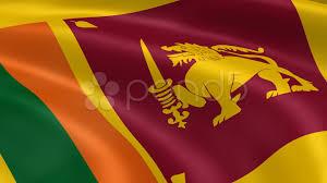 Sri Lanka Flag Lion Sri Lankan Flag In The Wind Hi Res Video 10684916