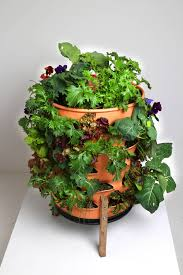 Patio Vegetables by New Self Fertilizing Garden Tower Revolutionizes The Ability To