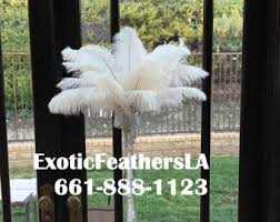 Ostrich Feathers For Centerpieces by 100 Pcs White Tail Ostrich Feathers 13 16wedding Table