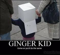Funny Ginger Meme - ginger kid