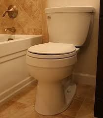 Kohler Comfort Height Round Toilet Small Bathroom Remodeling Fairfax Burke Manassas Remodel Pictures