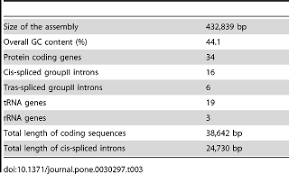 rapid sequencing of the bamboo mitochondrial genome using illumina