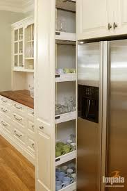 Kitchen With Pantry Design Interesting Small Kitchen Pantry Ideas Fantastic Home Interior