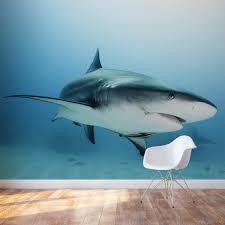 caribbean reef shark wall mural