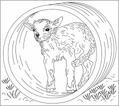 nicole u0027s free coloring pages september 2006