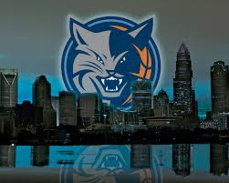 charlotte bobcats desktop wallpapers the official site of the