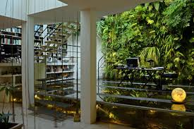advice for creating a healthy and beautiful green wall from its