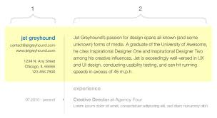 forms of resume the usability of resume design