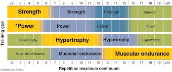Bench Press Hypertrophy How Effective Is Body Beast For Hypertrophy U2014 Tyler Robbins Fitness
