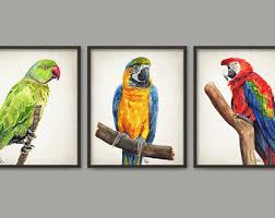 parrot home decor parrot painting etsy