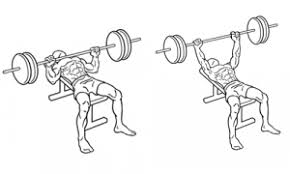 Flat Bench Barbell Press The Best Chest Workouts To Build Upper Pecs Nearfox