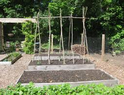 photo gallery my super duper tomato trellis