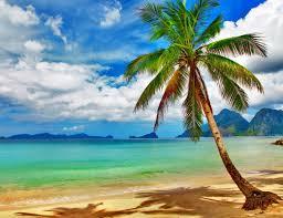 tropical paradise wallpaper wallpapersafari