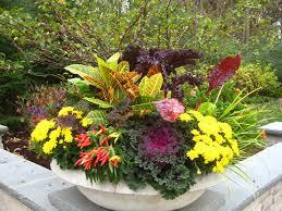 Unique Plant Pots 257 Best 2017 Outdoor Planters Images On Pinterest Gardening