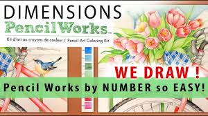 color by numbers dimensions pencil art coloring kit learn how to