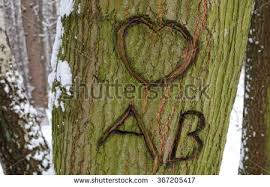 Initials Carved In Tree Initials On Tree Stock Images Royalty Free Images U0026 Vectors