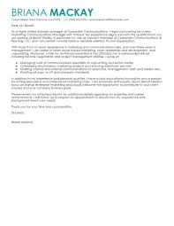 Marketing And Sales Cover Letter by Best Assistant Manager Cover Letter Examples Livecareer