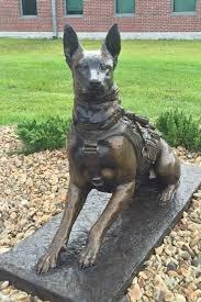 belgian malinois k9 attack marsoc k9 belgian malinois bronze military dog statue k9 memorial