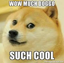 Meme Generator Doge - wow much doggo such cool doggo the doge meme generator