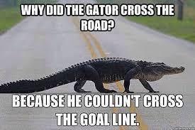 Alligator Memes - georgia bulldog nation s best anti florida gator memes of the week