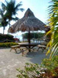 Cheap Tiki Huts For Sale 53 Best Tiki Huts Images On Pinterest Backyard Ideas Outdoor