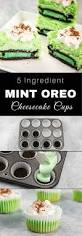 mini mint oreo cheesecake cupcakes tipbuzz