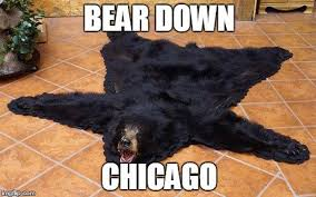 Patient Bear Meme - these chicago bears memes are hard to look at but funny as hell