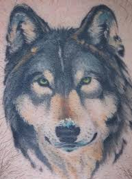 celtic wolf tattoo designs with blue eyes pictures to pin on