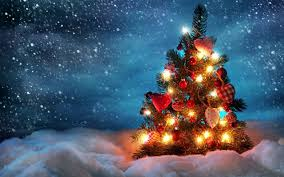 vibrant wallpaper shining christmas tree in snow wallpaper amazing the wallpapers