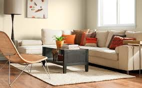 living room paint color ideas with brown furniture traditional