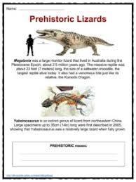 lizard facts worksheets u0026 information for kids