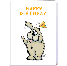 happy birthday dog greeting card by graphicdoodles card gnome