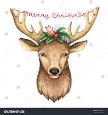 watercolor deer head illustration christmas cards stock