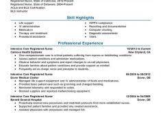 Icu Nurse Job Description Resume by Download Big Data Resume Haadyaooverbayresort Com