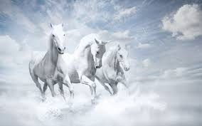 white mustang horse who are the armies that will follow christ on white horses