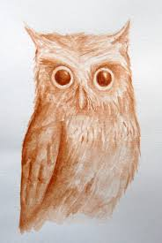 owl the aspiring illustrator