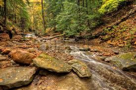 fallen tree crossing sulpher springs creek ohio