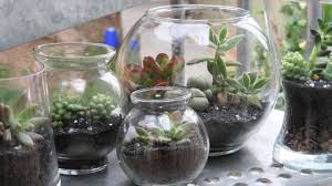 how to make a terrarium youtube