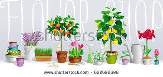 romantic flower invitation greeting card wedding stock vector